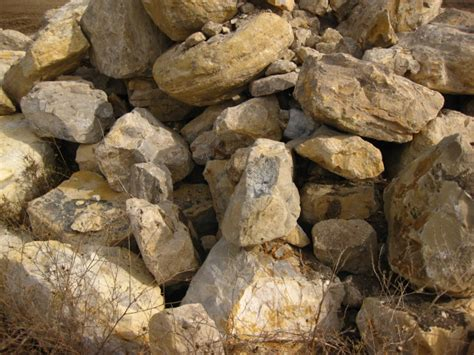 6 types of boulders to enhance your landscape inspired expos