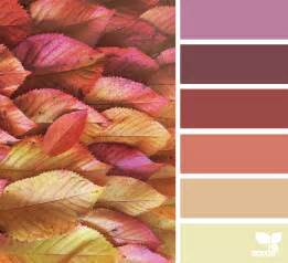 color seeds color season design seeds