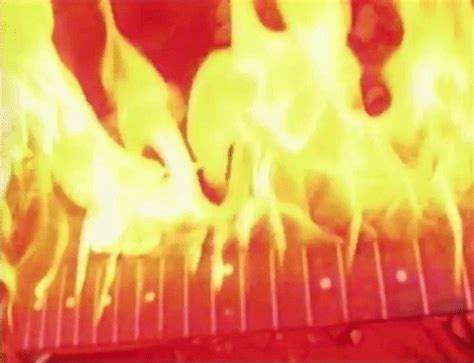 sub pop burn gif by sub pop records find & share on giphy