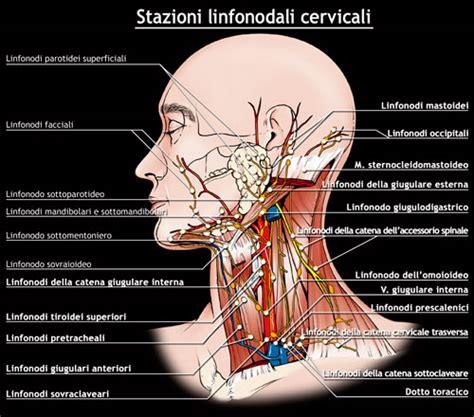 infiammazione vasi linfatici tiroide