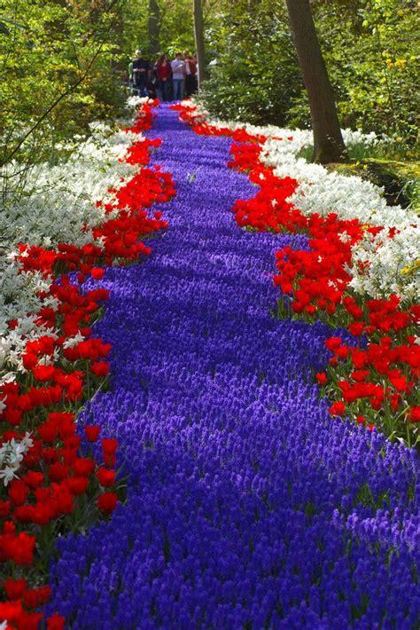 River By J 211 Zef Obertaniec Gardening Group Board Blue Flower Garden