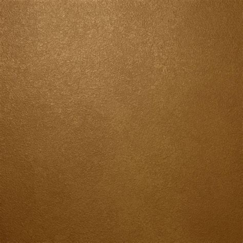 ralph 13 in x 19 in me135 gilt bronze metallic specialty paint chip sle me135c