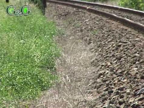 Sprei Railway weedfree on track spray doovi