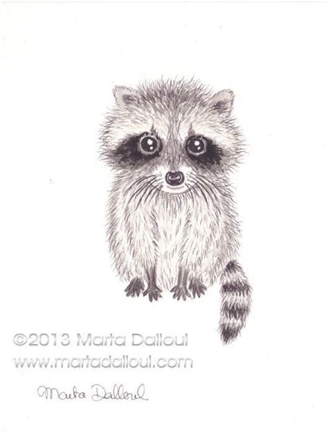 cute raccoon drawing easy www pixshark com images