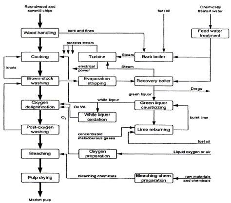 Kraft Paper Process - genetically modified trees mmg 233 2014 genetics