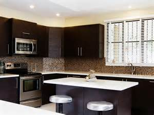 Contemporary kitchen backsplash ideas with dark cabinets tray ceiling