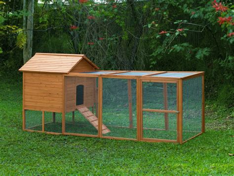 building a chicken coop free range vs chicken run
