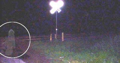 film pengabdi setan nyata new video hantu nyata paling seram di dunia saat ini