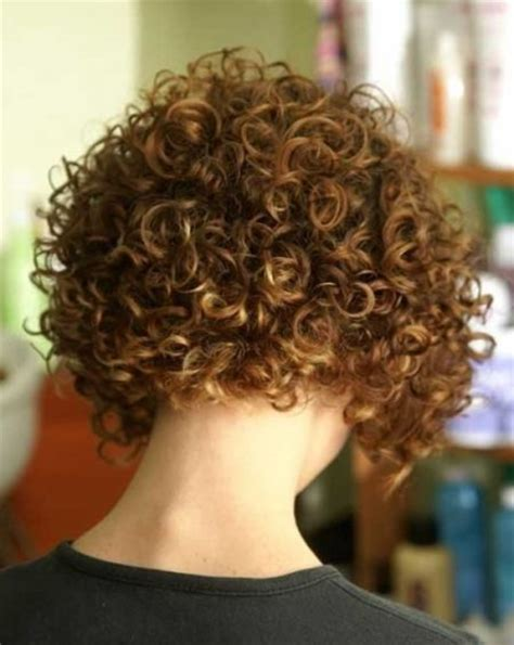 curly blunt cut short hair cuts back view curly inverted bob back view regarding inspire glamor