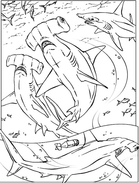 educational coloring pages 5th grade happy shark color page