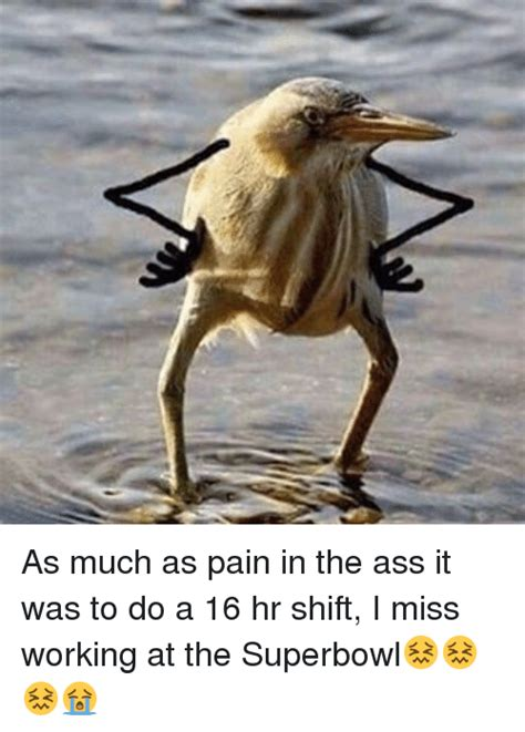 Pain In The Ass Meme - 25 best memes about missing work missing work memes