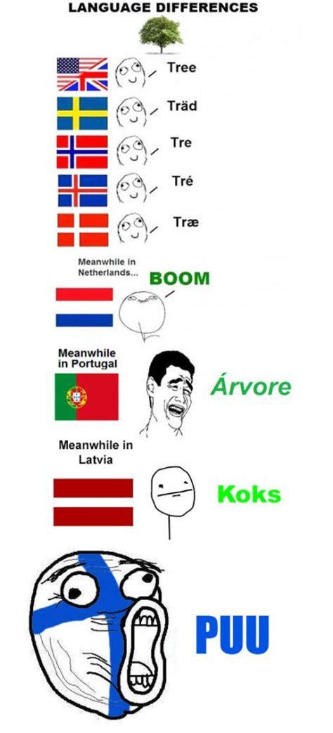 Finnish Language Meme - best 25 poland language ideas on pinterest learn polish