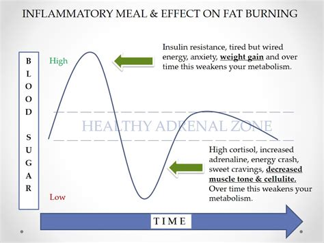healthy fats blood sugar are carbohydrates bad for you nutritional therapist