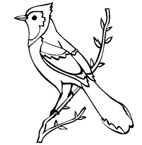bluebird coloring pages preschool blue bird coloring page kids coloring page gallery