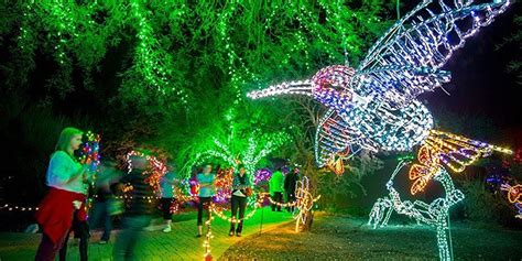 5 Places In The West To Visit During The Holidays Detours Arizona Zoo Lights