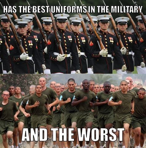 Funny Marine Corps Memes - some say that silkies are the best thing ever