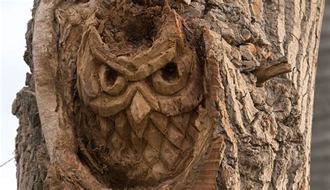 Owl Tattoo The Walking Dead   everything you need to know about fear twd s owl the