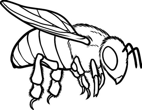 printable honey bees coloring pages adults printable