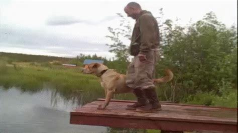 afv boat fails new trending gif on giphy dog fail man falling lake afv