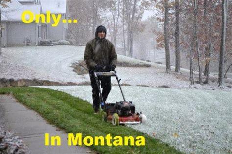 montana meme montana mint the greatest website of wyoming 15
