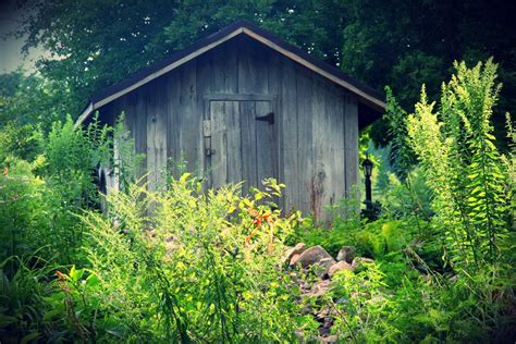 shed in the woods by arrowlass on deviantart