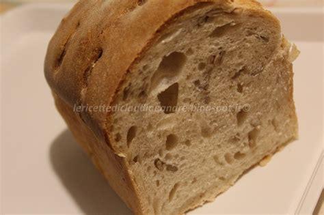 pane in cassetta con lievito madre ricetta pane in cassetta con semi di girasole e lievito