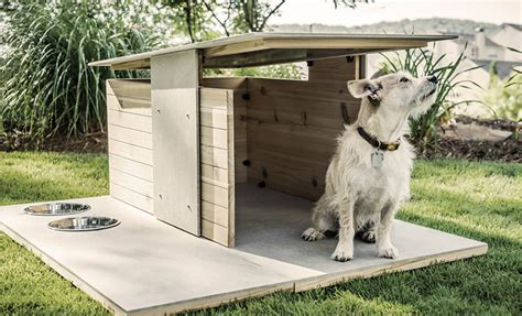dog house design ideas 13 inspiring ideas to build your own dog house