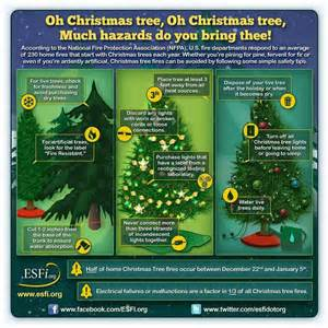 christmas tree safety holidays pinterest