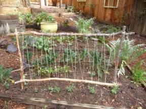 easy pea trellis easy diy pea trellis project crafthubs gardening