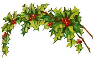 Christmas holly png christmas clipart free
