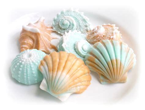 decorative soap gift sea shell soap gift set house