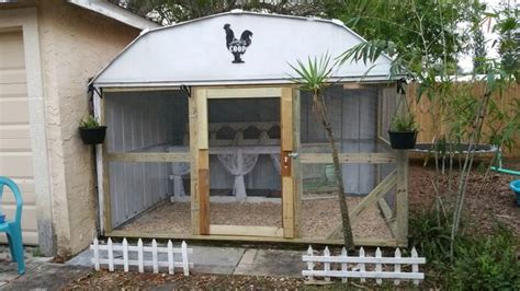 turn an metal shed into a chicken coop chickens