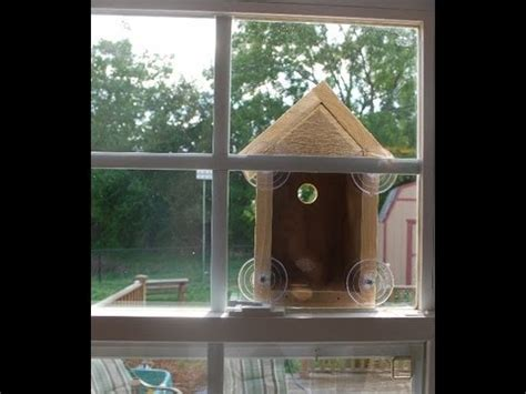 see through window bird house how to make a window bird house nest box woodlogger com youtube