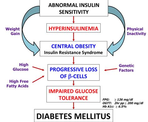 diabetes mellitus pathophysiology flowchart pdb 101 global health diabetes mellitus about causes