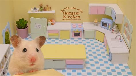 Hamster Kitchen by Building The Hamster Kitchen Part 1