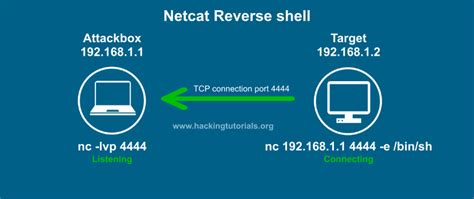 nmap ncat tutorial create a reverse shell backdoor even the netcat doesnt