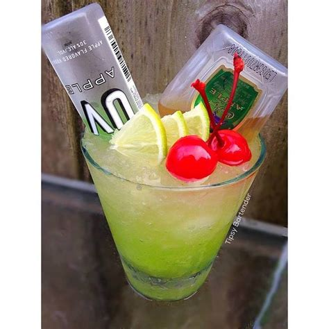 apple martini mix 25 best ideas about crown royal apple recipes on