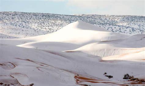 snow in sahara snow in the sahara desert photos sri lanka news