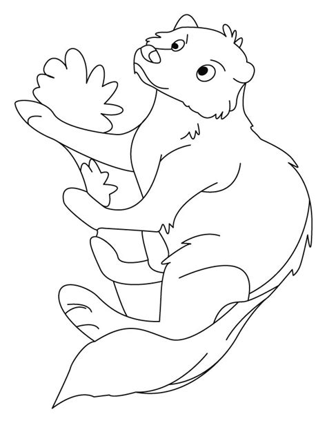 printable version of rikki tikki tavi free rikki tikki tavi coloring pages