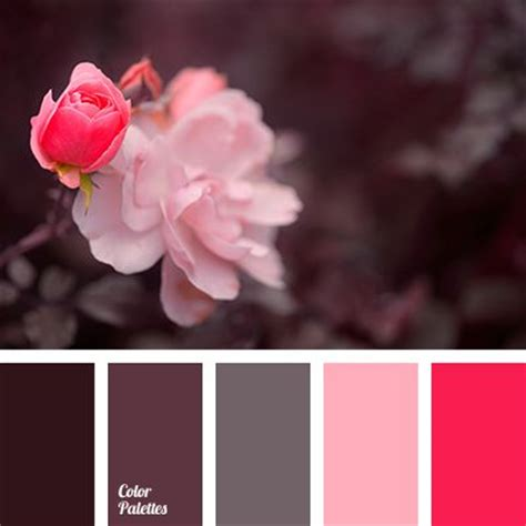pink and brown color scheme color palettes aubergine colour and dusty pink on pinterest