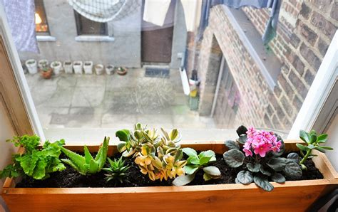 window planters indoor small house apartment dwellers what are your life hacks
