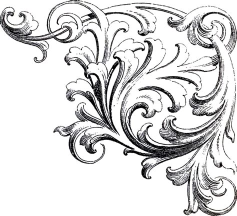 ornaments drawing scrolls corner ornament images the graphics