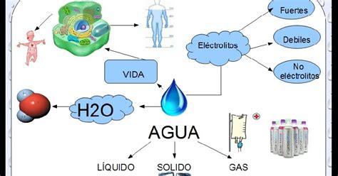 imagenes mapa mental del agua ana gabriela mapa mental del agua