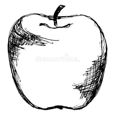 imagenes blanco y negro de frutas l 237 nea blanco y negro vector aislado de la manzana de la