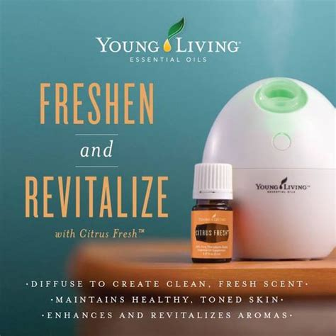 Usb Diffuser Living living essential oils and on