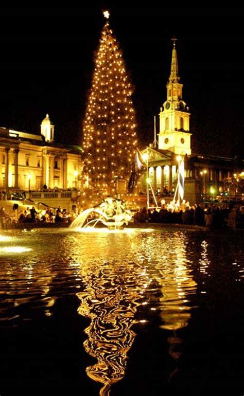 livin 180 sponge trafalgar square christmas tree