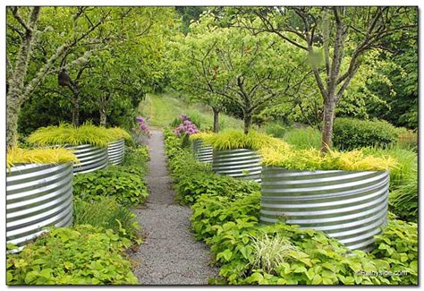 Fruit Trees In Planters by Choosing The Right Tree For Daydream Pickingatree