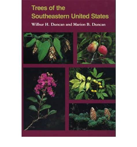 essential trees and shrubs for the eastern united states the guide to creating a sustainable landscape books trees of the south eastern united states wilbur h