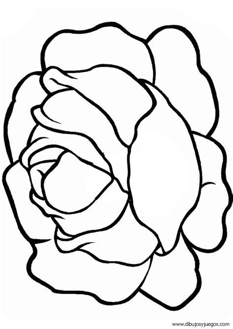 dibujos para colorear dibujos para pintar colorear y dibujo de lechuga 003 dibujos y juegos para pintar