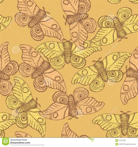 vintage pattern sketch sketch moth incect in vintage style stock vector